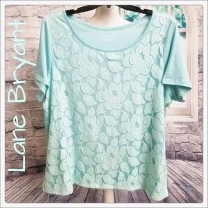 Ice Blue Lace Front Tee by Lane Bryant Size 22/24